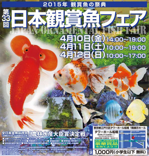 観賞魚フェア2015.jpg