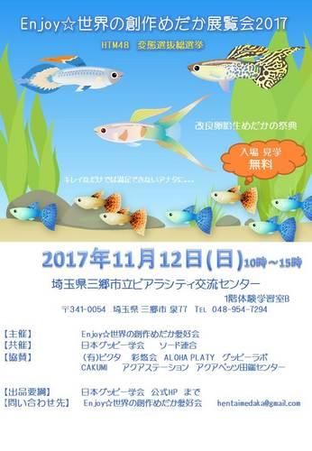 Enjoy☆世界の創作めだか展覧会2017ポスターPP③JPEG.jpg